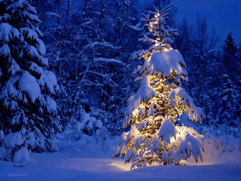 christmas trees wallpaper, christmas computer merry wallpaper, free wallpapers christmas