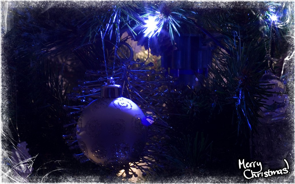 decorated fibre optic christmas trees, show decorated christmas trees, beautifully decorated christmas trees