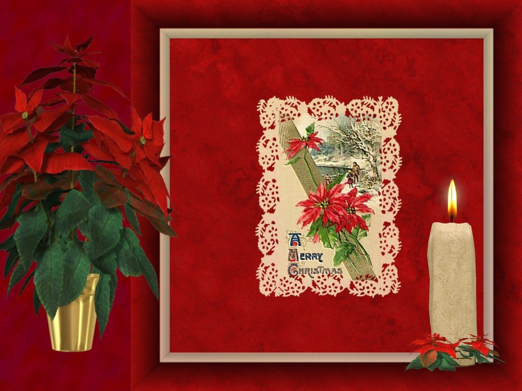 christmas angels, easy christmas crafts, christmas photo cards