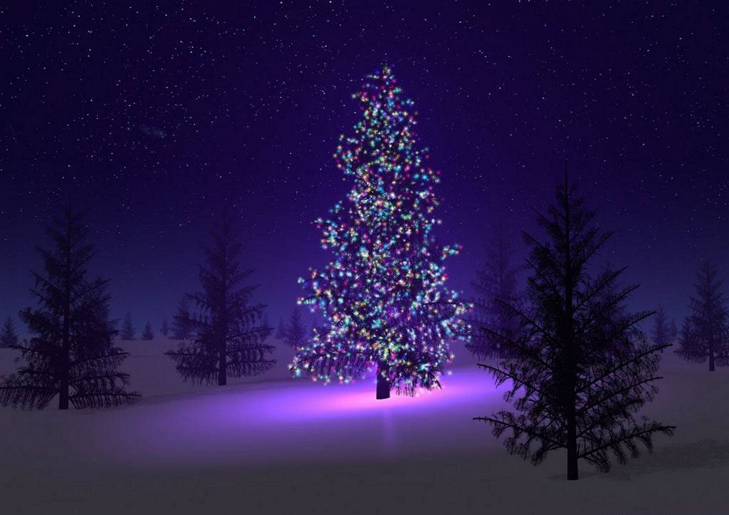 christmas tree lights, decorated christmas trees in the usa, fiber optic christmas trees, outdoor christmas trees