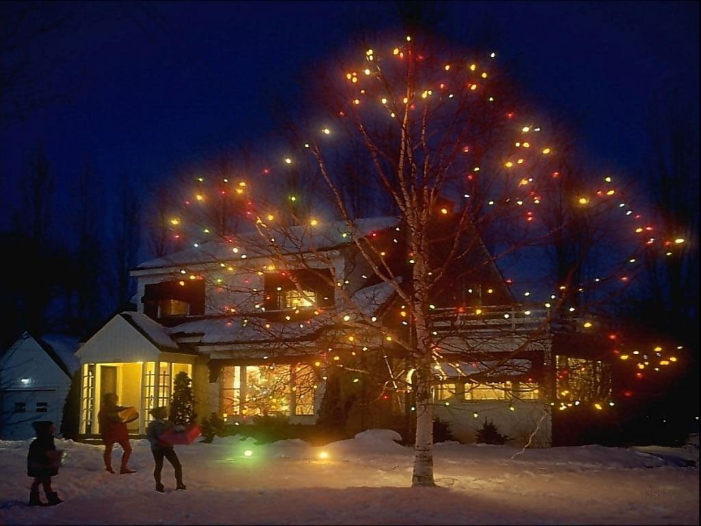 christmas led lights, swag christmas lights, christmas display trees lights christmas outdoor, dark blue christmas lights