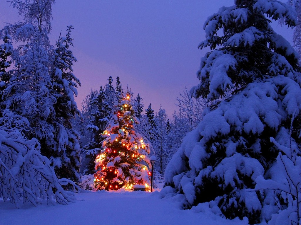 animated christmas gif, animated christmas, animated christmas trees
